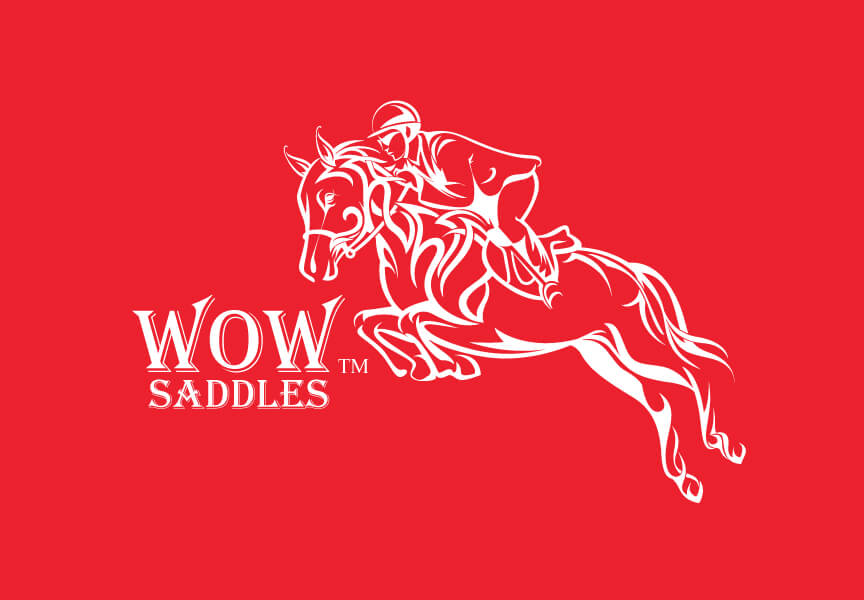 Wow Saddles